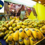El Ruso de Rocky, nueva agencia de publicidad de Plátano de Canarias