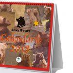 """VCCP Spain presenta """"Sexy Bears"""", primer calendario solidario con osos desnudos."""