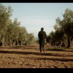 DDB España crea para la Interprofesional del Aceite de Oliva de Español la campaña Taste the Truth