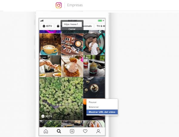 instagram, anuncios, programapublicidad,