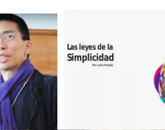 simplicidad , sapients, John Maeda, programapublicidad,