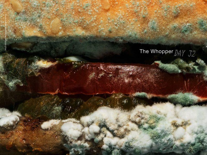 Burger king , muestra , belleza , moho, no tener , conservantes artificiales , whopper