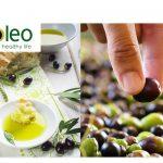 Starcom España gana la cuenta internacional de Deóleo