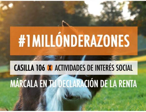 x solidaria, #1millonderazones!, matchpoint, spot , programapublicidad