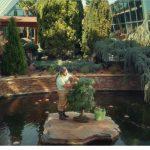 Burger King España lanza «botánicos» con David Madrid.