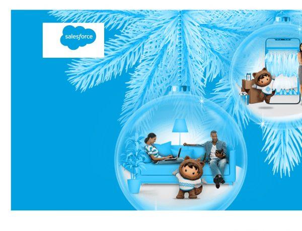 salesforce, Black Friday ,Cyber Monday, programapublicidadprogramapublicidad