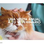 AMT Comunicación lanza campaña de concienciación de salud animal de la Comunidad de Madrid