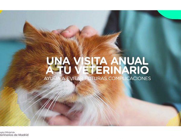 AMT COMUNICACIÓN, comunidad madrid, mascotas, Colegio de Veterinarios de Madrid , COLVEMA, agencia ,Cuidándolos, nos cuidamos, programapublicidad