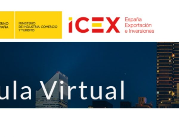 icex, aula virtual, web, programapublicidad