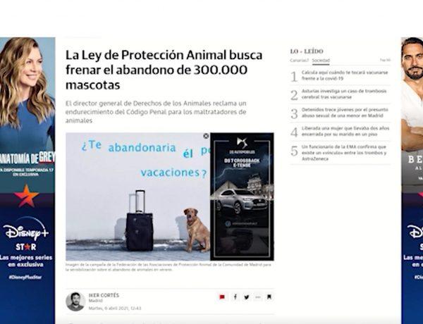 skintext, formato ,publicitario ,lanzado ,WeMass ,exclusiva ,España. programapublicidad