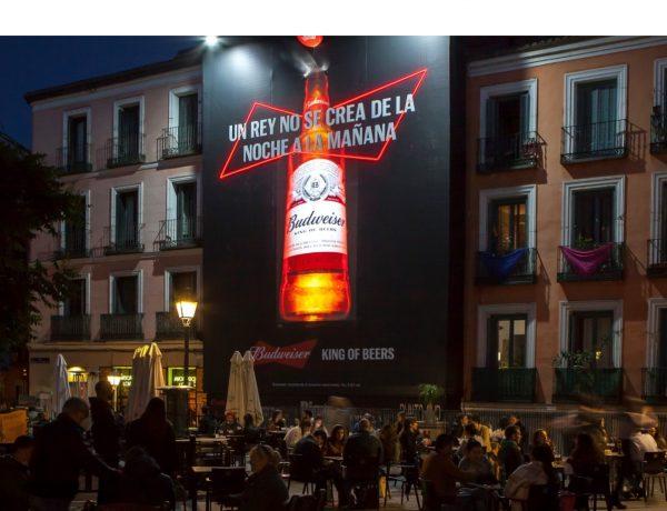 BUDWEISER, NOCHE, reverencia, chapa ,botella ,Budweiser ,instalada ,lona ,Malasaña,Madrid, programapublicidad