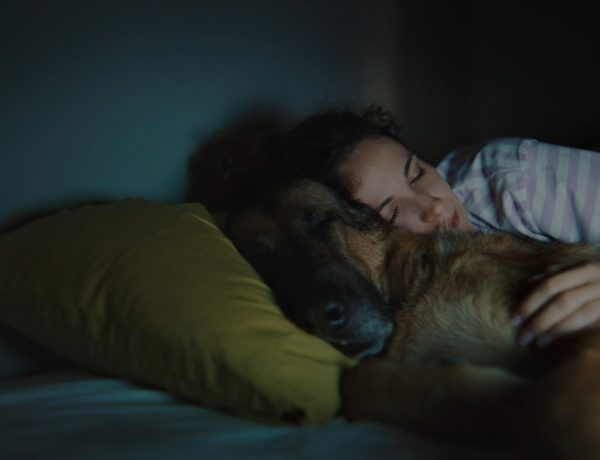 ASEVI, RUSHMORE, Chica ,perro segundo, programapublicidad